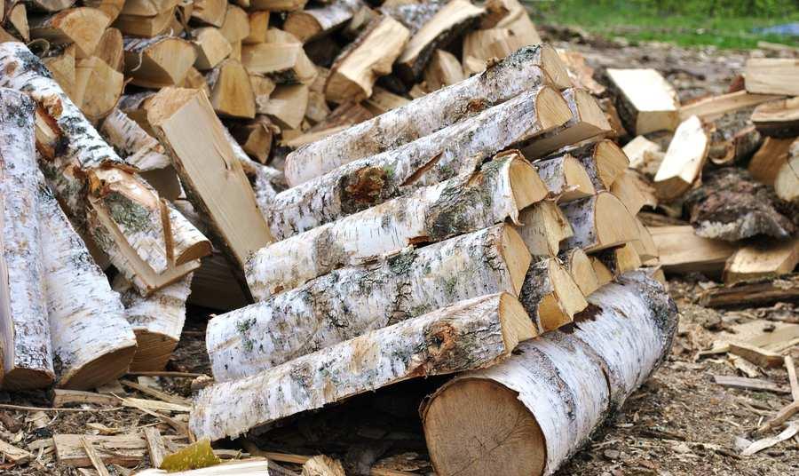 купить дрова березовые дешево